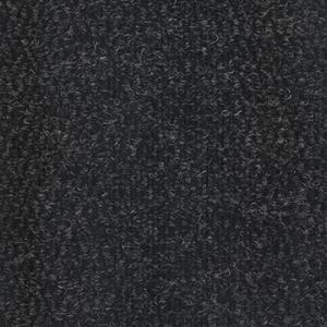 795 - Carvão
