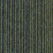 Coleção Essence Stripe - 710278005